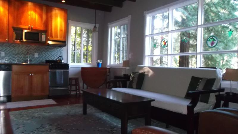 Lovely little hideaway in the woods. - Luxury Cabin at the River - Guerneville - rentals