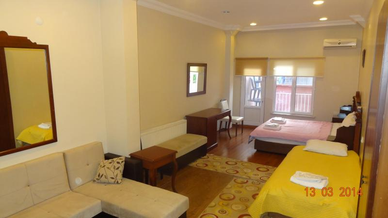 clean,comfortable,& cozy flat in harbiye (taksim) - Image 1 - Istanbul - rentals