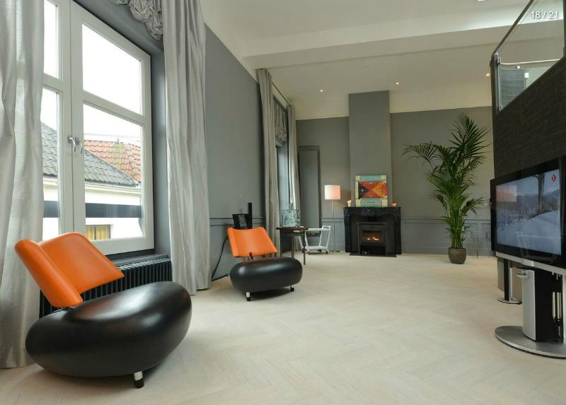 Livingroom + fireplace - Beautiful luxurious loft in old town center Haarlem - Haarlem - rentals