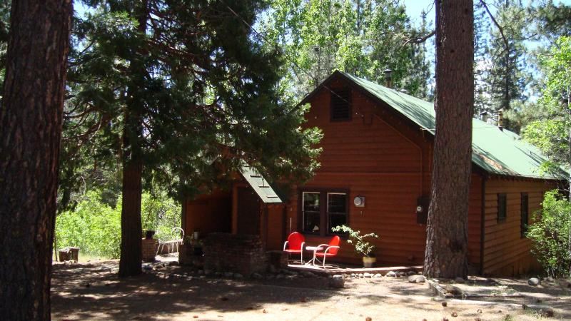 We Call Our Cabin Mt. Elwell - Peaceful Cabin - 40 Acres on Scenic Feather River - Graeagle - rentals