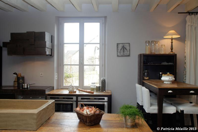 Traditional holiday cottage with a sight on Loire - Image 1 - Candes-Saint-Martin - rentals