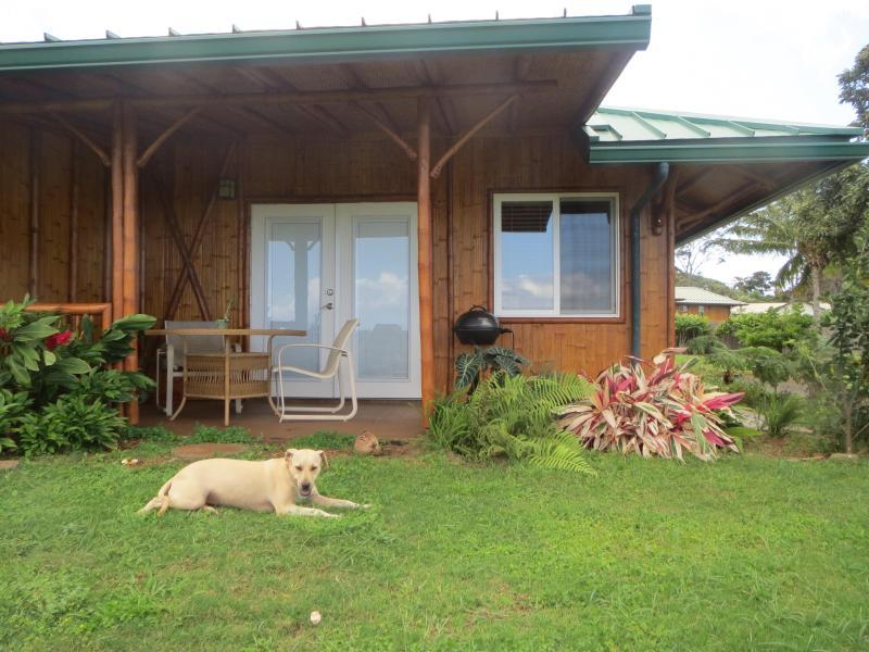 Bamboo Heaven Maui Omaomao (Green) Room lanai with our dog Lani (Heaven) - Bamboo Heaven Maui Bed & Breakfast LLC - Haiku - rentals