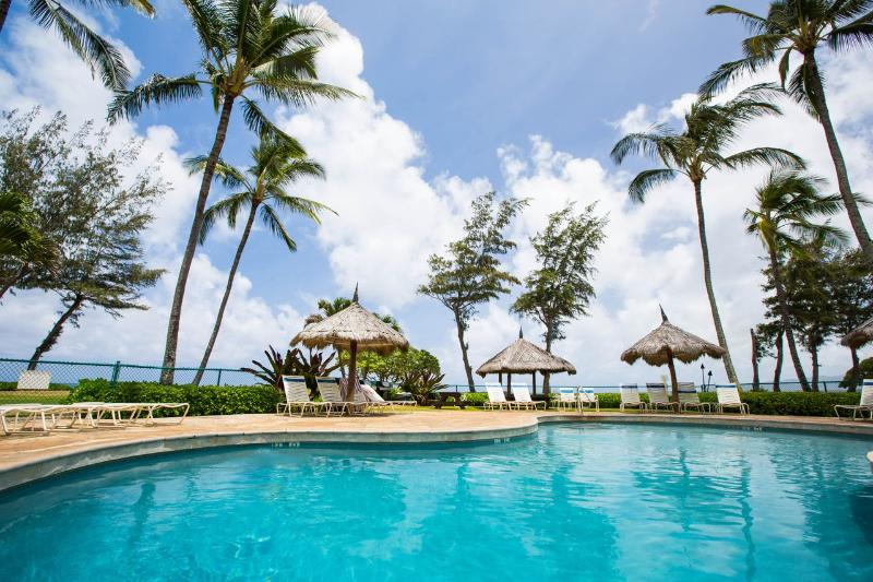"""Beachside Studio """"Best Destination and AWESOME loc - Image 1 - Kapaa - rentals"""
