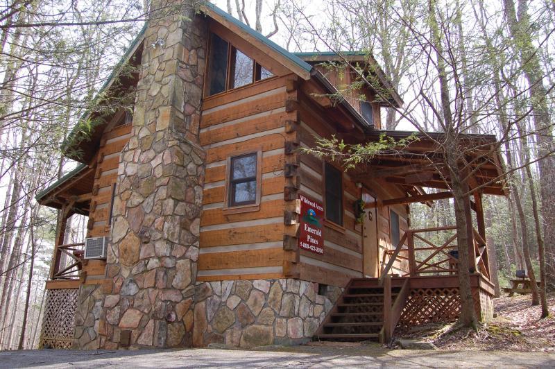 "Smoky Mountain Honeymoon ""EMERALD PINES"" Cabin - Image 1 - Cosby - rentals"