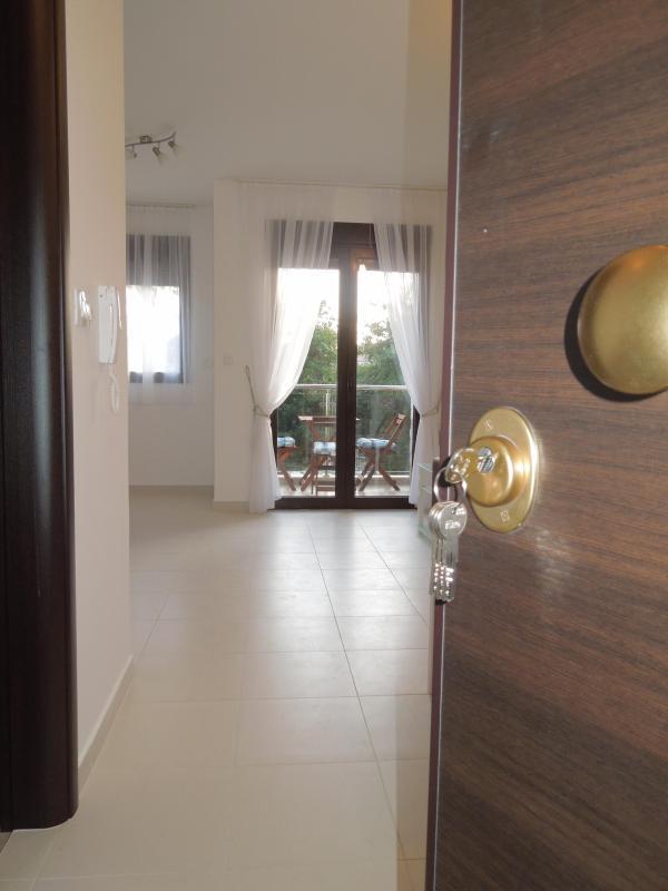 Apartmani Becic - Becici Montenegro - Image 1 - Rafailovici - rentals