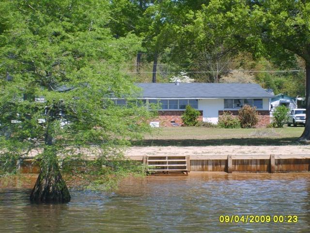 Big Water of Lake Marion has the best cat fishing - Image 1 - Summerton - rentals