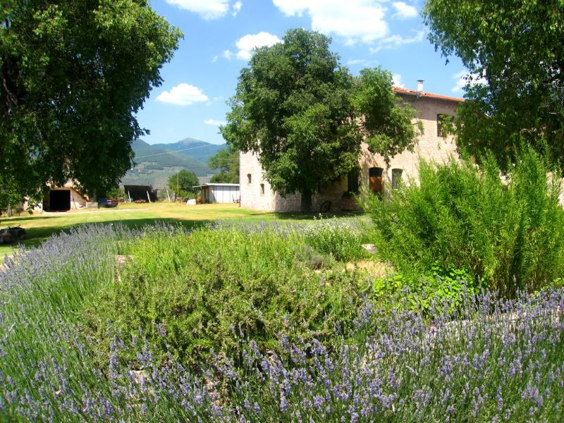 Sensationally beautiful grounds and farmhouse, containing 2 self-catering apartments - Poreta Bio Farm Suite B - Rome/1 hr 15 mins - Lenano - rentals