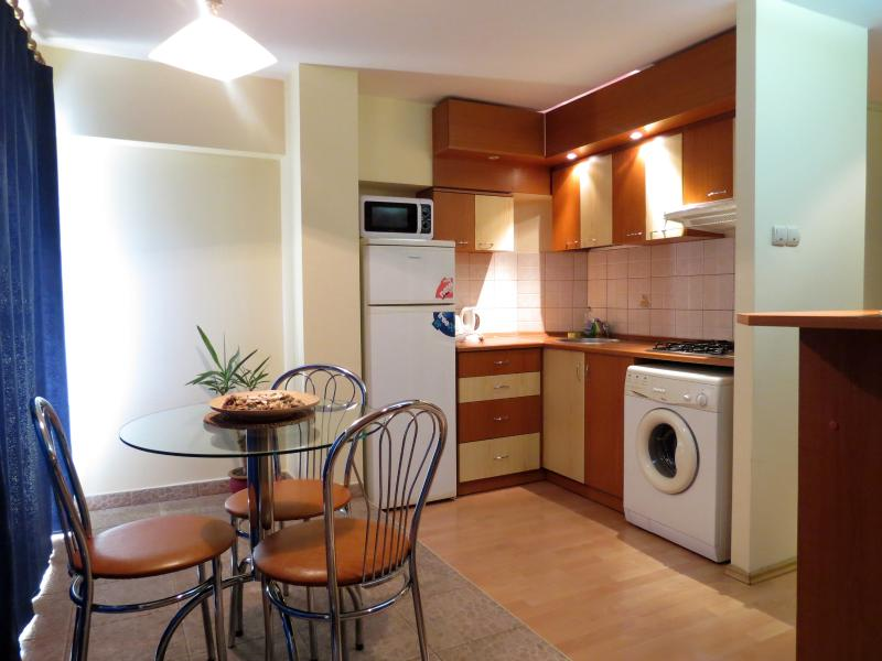 american open style kitchen - Luminous one bedroom apartment Romana Square - Bucharest - rentals