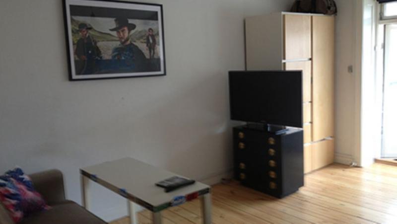 Thyregodsvej Apartment - Cosy Copenhagen apartment near Valby station - Copenhagen - rentals