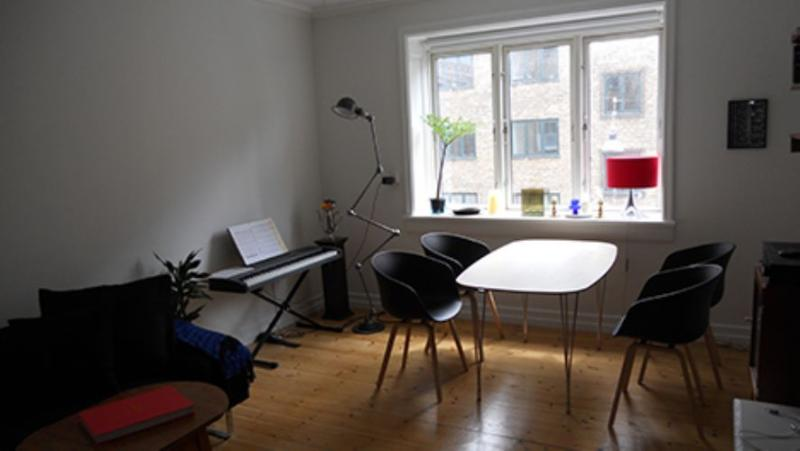 Raadmandsgade Apartment - Nice bright Copenhagen apartment at Noerrebro - Copenhagen - rentals