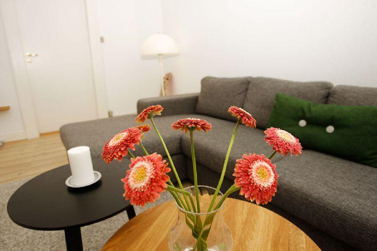 Egegade Apartment - Large spacious Copenhagen apartment near Forum metro - Copenhagen - rentals