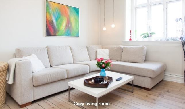 Vardegade Apartment - Lovely and bright Copenhagen apartment near Svanemoelle - Copenhagen - rentals