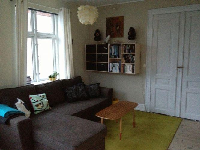 Noerrebrogade Apartment - Bright child-friendly Copenhagen apartment at Noerrebro - Copenhagen - rentals