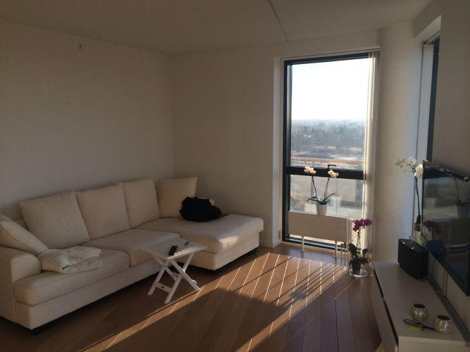 Robert Jacobsens Vej Apartment - Copenhagen apartment with stunning views of Faelled Park - Copenhagen - rentals