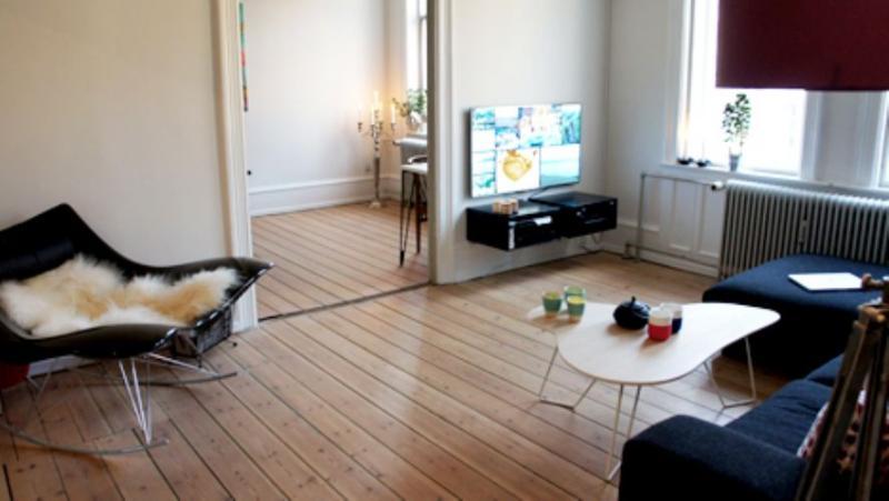Vester Voldgade Apartment - Spacious Copenhagen apartment near Town Hall Square - Copenhagen - rentals