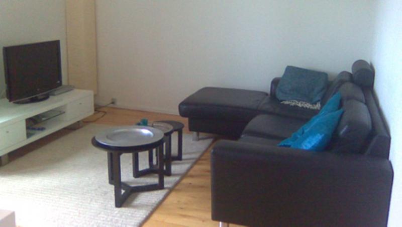 Telemarksgade Apartment - Lovely Copenhagen apartment near Amagerbro metro - Copenhagen - rentals