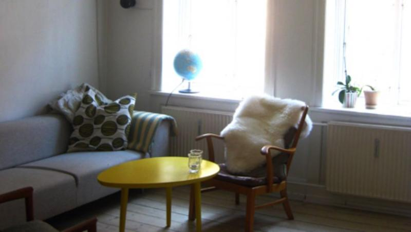 Baggesensgade Apartment - Beautiful Copenhagen apartment near Noerreport station - Copenhagen - rentals