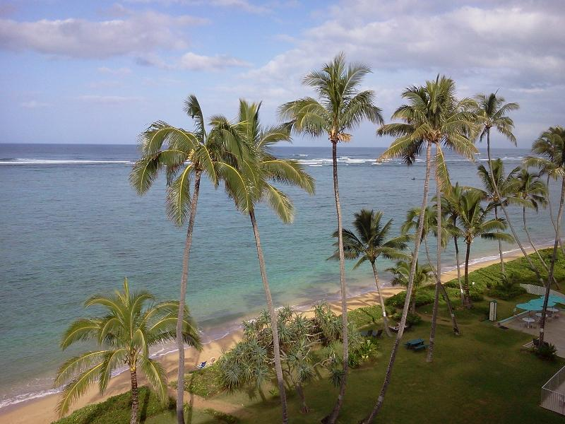 Beach and Palms - View from Living Area - Luxury Beachfront Penthouse on Oahu's Safest Beach - Punaluu - rentals