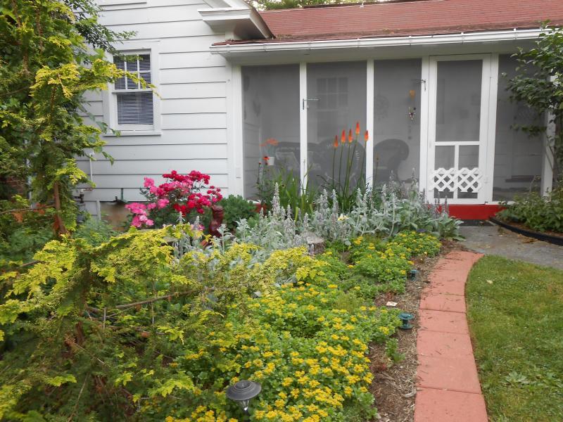 Screened-in porch overlooking Zen garden - Just Like Heaven Carriage House - Winchester - rentals