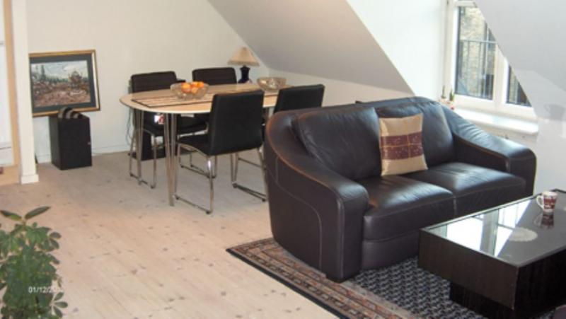 Viktoriagade Apartment - Stylish Copenhagen apartment close to Central Station - Copenhagen - rentals