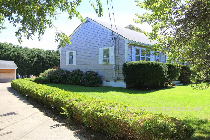 Front of House from Head of Drive - TOTHG - Adorable Updated Vineyard Cottage, Lovely Landscaped Yard,  Central A/C,  Flat Screen TV, Bike Paths at end of Drive, One Mile to Oak Bluffs Center - Oak Bluffs - rentals