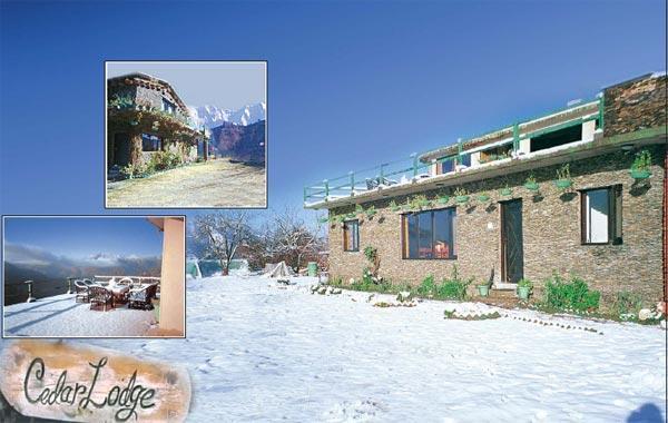 Main View White Winter - Cedar Lodge near Nainital - Nainital - rentals