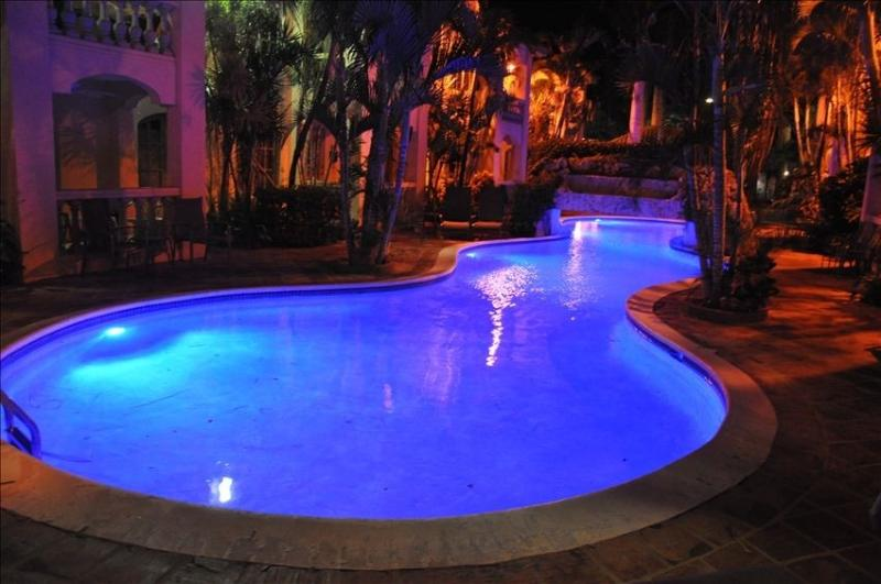 80 Foot Long Pool with Waterfall, Swim 24/7! - Gorgeous, Close to everything in Aruba! Great Rate! - Arikok National Park - rentals