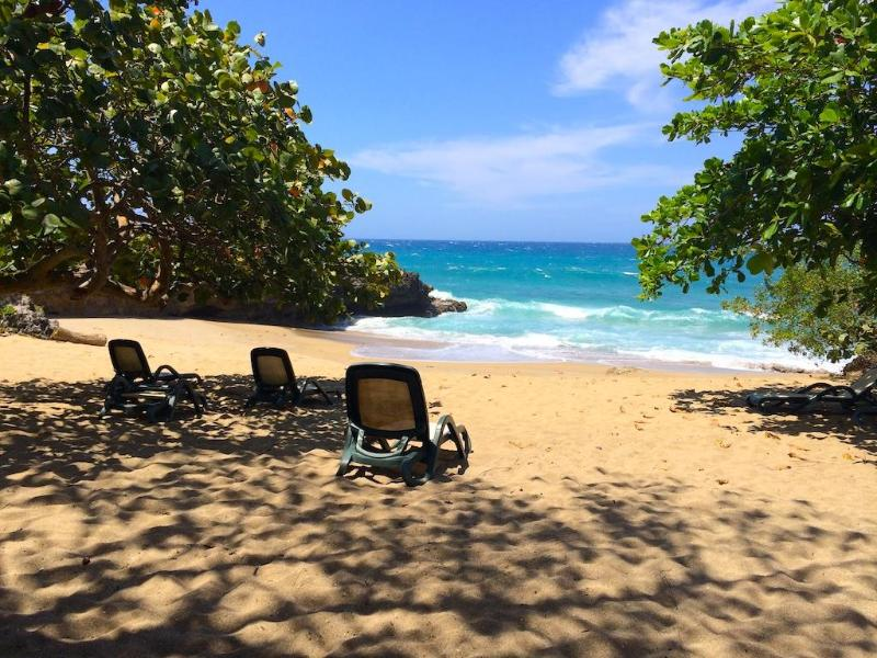 Beach - Luxurious condo for rent! - Studio on the beach!!! - Sosua - rentals