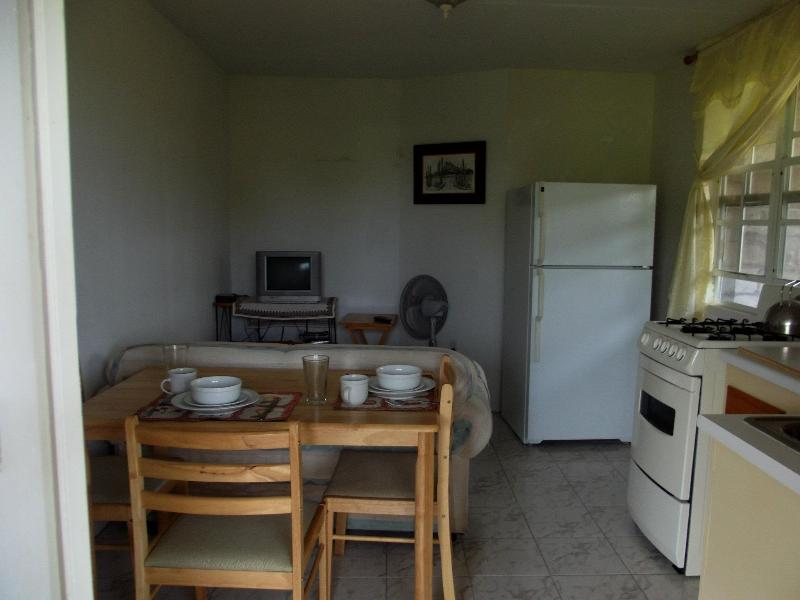 Kitchen, livingroom and dining area - Coconut House (Ocean and St.kitts View) - Charlestown - rentals