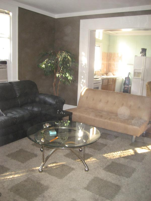 living room - garden dist steps from street car safest area - New Orleans - rentals