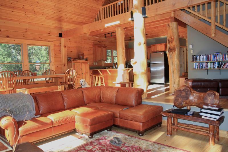 sunken living room - The Stereotype of luxury log cabin - McCall - rentals