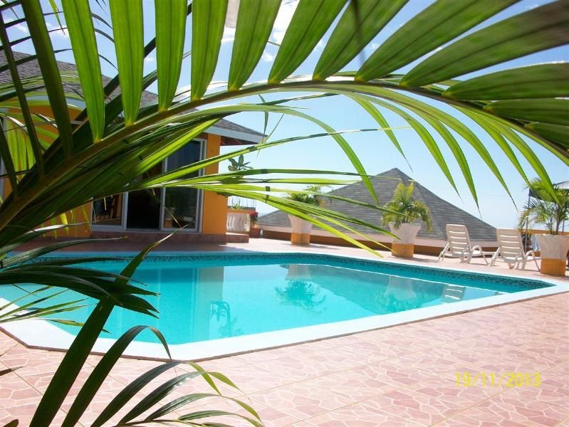 Palm Trees Pool - Palm Trees - Whitehouse - rentals
