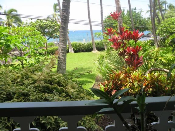 Oceanfront From Your Living Room - Image 1 - Kailua-Kona - rentals