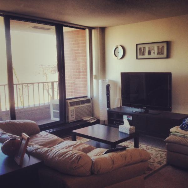 Living room with balcony overlooking Charl - 2 BDR for sublet (Dec 19- Jan 24) SFP Boston - Boston - rentals