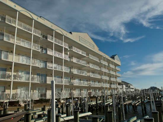 Bahia Vista I 408 - Image 1 - Ocean City - rentals