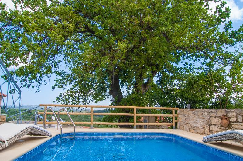 private eco pool with shaded patio - Luxury Cretan villa with private salted pool - Pemonia - rentals