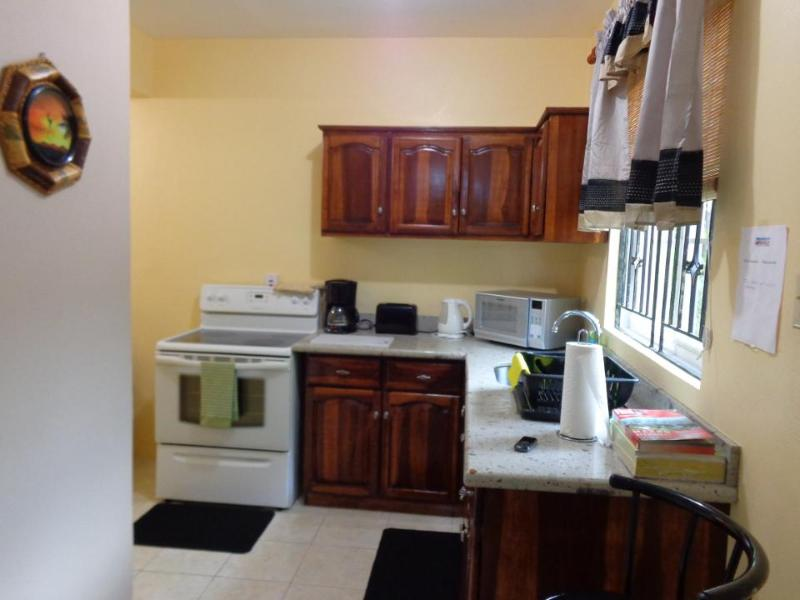 Kitchen - Kingston Vacation  Rental  Call 1876-631-2910 - Kingston - rentals