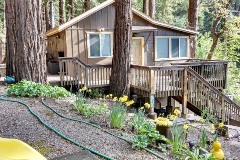 Secluded, dog-friendly mountain cabin w/jungle gym, deck, outdoor firepit & more - Image 1 - Felton - rentals