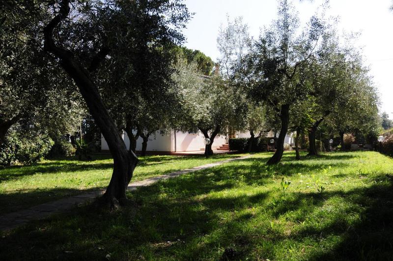 View from the garden 1 - Villa close to Adriatic sea - Francavilla Al Mare - rentals