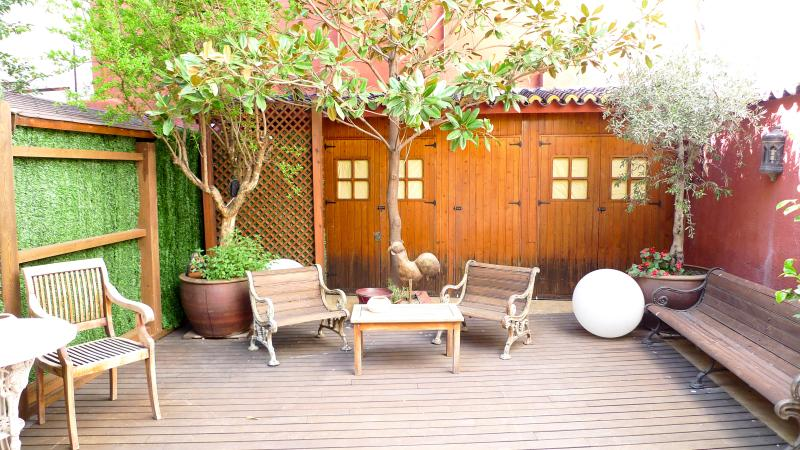 Gorgeus Loft with Terrace in La Latina - Image 1 - Madrid - rentals