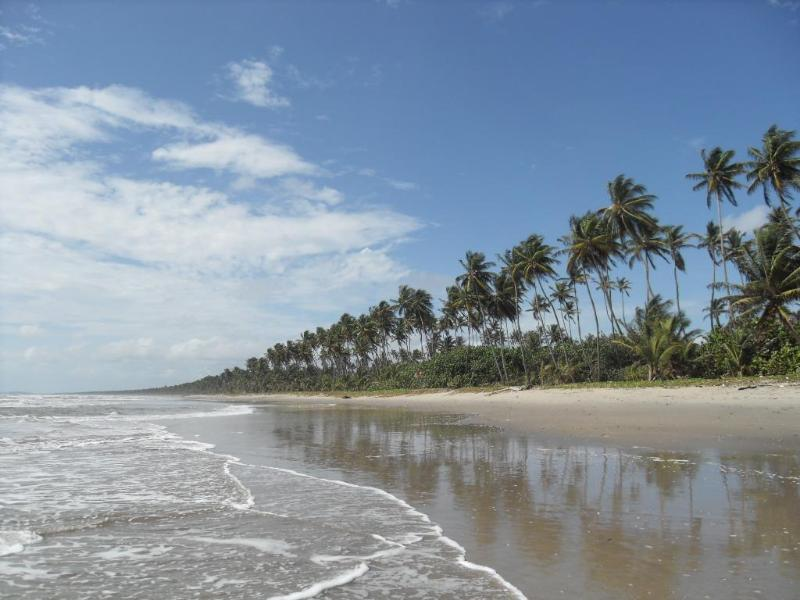 Your beach to enjoy - Caribbean Beachcomber's Paradise - Matura - rentals