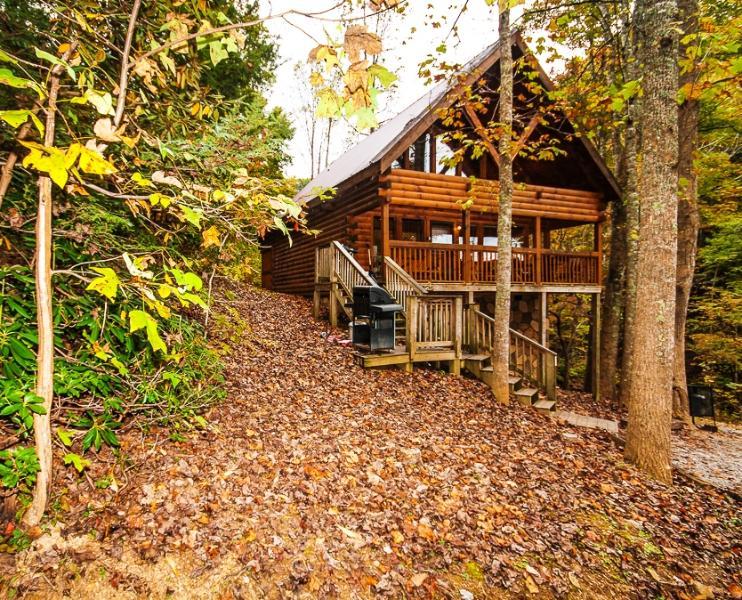 Honey Bear...2BR 2BA Smoky Mtn. Cabin - Image 1 - Sevierville - rentals