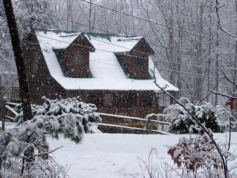 Bear Necessities Winter View - Bear Necessities Cabin  Pet friendly in the Smokys - Sevierville - rentals