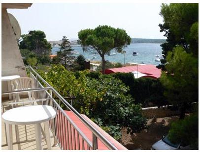 TERRA (4+1 pax) apartment near the beach - Image 1 - Novalja - rentals