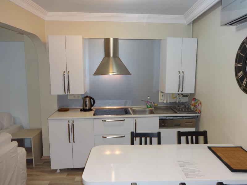 New Decoration Apartment Whiite House - Image 1 - Istanbul - rentals