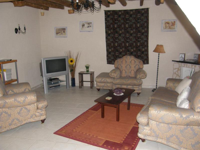 Spacious Lounge with t.v. DVD, video, Ipod dock - renovated 300 year old wine making barn FREE WIFI - Les Verchers-sur-Layon - rentals
