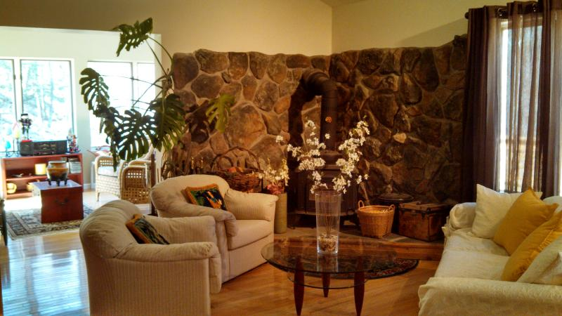 Living Room - Spacious Airy Contemporary Woodstock Townhouse wit - Woodstock - rentals