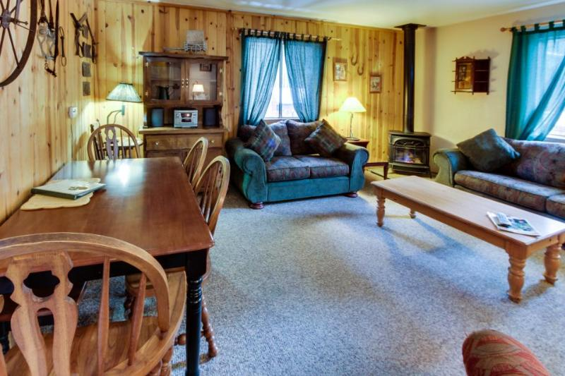 Cabin-style condo w/ hot tub & dog-friendly, fenced grounds - Image 1 - South Lake Tahoe - rentals