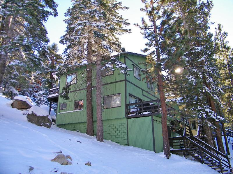 Tahoe Treehouse! - Lake Tahoe Treehouse w/ Private Jacuzzi /Free WIFI - South Lake Tahoe - rentals