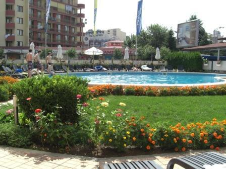 Pool and garden area - Excellent 1 bedroom apartment in good location - Sunny Beach - rentals